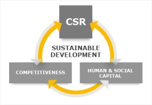 CSR_sudesh_kumar_foundation